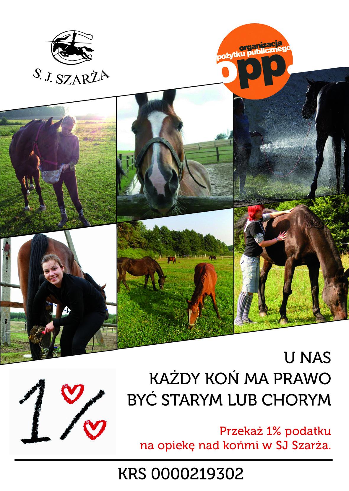 Każdy koń ma prawo na leczenie oraz emeryturę